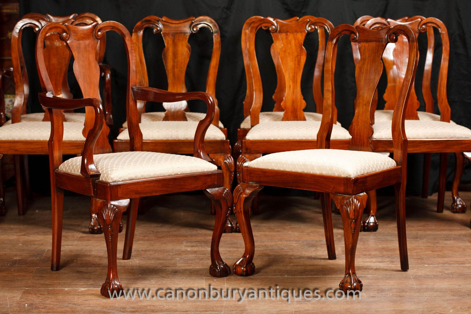 Queen Anne dining chairs in walnut