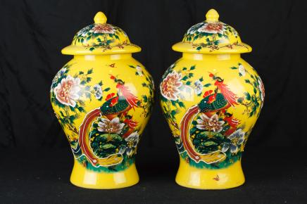 Pair Chinese Ming Porcelain Ginger Vases Urns Temple Jars Pheasant