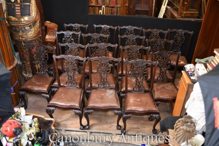 Chippendale Dining Chairs - Set 18 Antique Mahogany English Chair