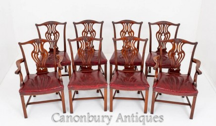 Mahogany Chippendale Dining Chairs 1900