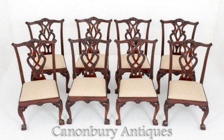 Set Chippendale Dining Chairs Mahogany Set 8