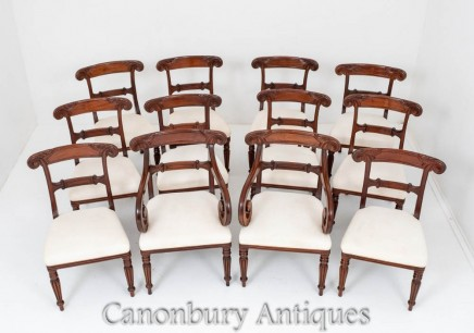William IV Dining Chairs - Antique Mahogany Set