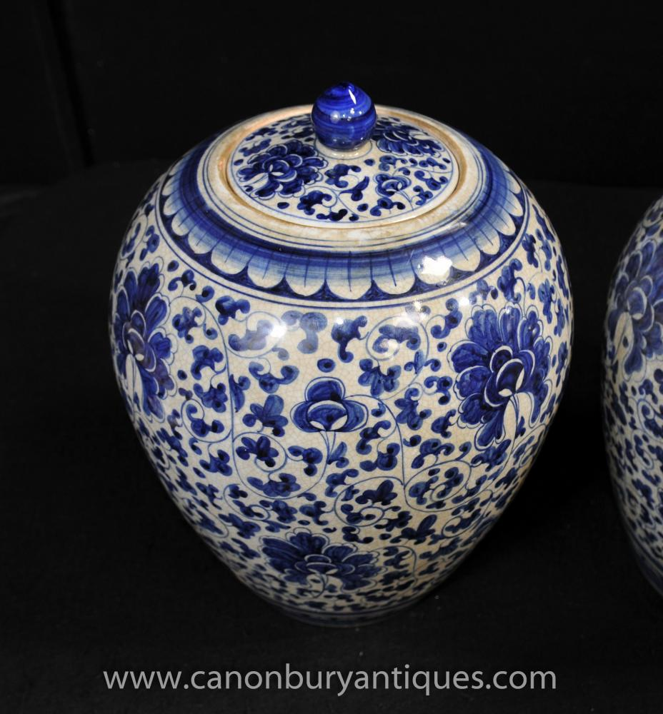 Pair Chinese Kangxi Blue and White Porcelain Floral Urns ...