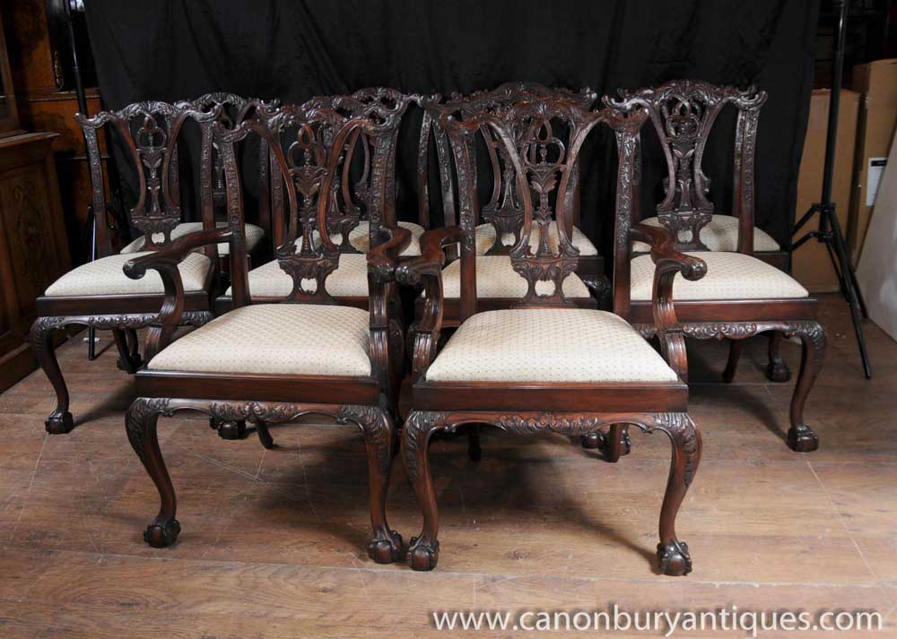 Set 10 Mahogany Chippendale Dining Chairs Ball Claw Feet  : Set201020Mahogany20Chippendale20Dining20Chairs20Ball20Claw20Feet20Diner20Chair 1381380877 product 93 from www.canonburyantiques.com size 1000 x 713 jpeg 98kB
