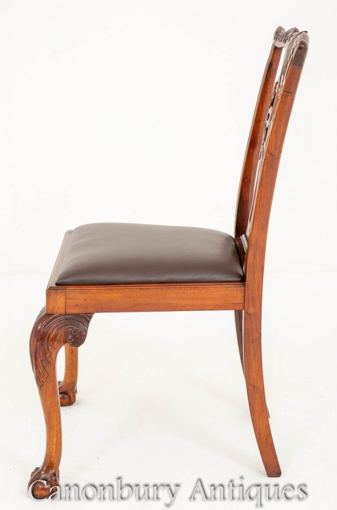 Set Chippendale Dining Chairs Mahogany Ball And Claw Feet
