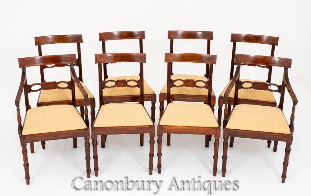 Set Regency Dining Chairs Antique Mahogany Ebay